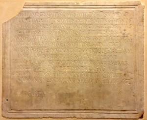 The Petrified Muse / Des poèmes latins sur la tristesse de perdre des enfants