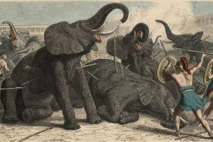 The Atlantic / The Exotic Animal Traffickers of Ancient Rome