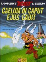 Asterix Gallus - #33 : Caelum in caput ejus cadit
