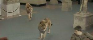 (2006) Rome : la série de Canal+ qui a mangé du lion !