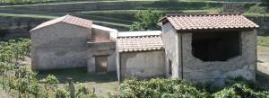 ITALIE - Boscoreale (Villa rustica)