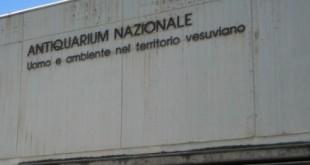 ITALIE - Musée de Boscoreale (Campanie)