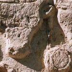 Archéologie expérimentale : Animaux et créatures mythologiques