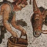La condition des esclaves à Rome (lecture suivie)