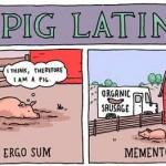 Quand un cochon illustre des proverbes en latin...