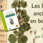 Les langues  anciennes  en botanique : travail sur le lexique
