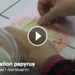 Tuto : fabriquer du papyrus