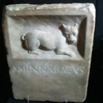 The petrified Muse / Epitaphes canines