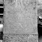 The Petrified Muse / La poésie latine et les limites de la médecine romaine