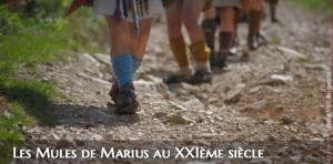 Leg8 / Les Mules de Marius au XXIème siècle