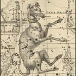 La toge et le Glaive : un temps de chien, la canicule