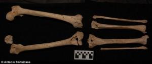 Daily Mail / Des analyses de squelettes confirme qu'on a bien trouvé la tombe de Philippe de Macédoine !