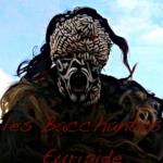 La compagnie les Ménades : Euripide, Les Bacchantes / Les Troyennes : activités pédagogiques à destination des enseignants