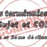 Parcours de révision : les terminaisons Sujet et COD (1ère déclinaison et 2ème déclinaison masculin)