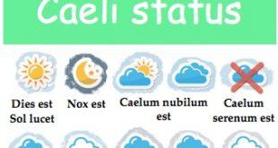 Affiche pour la classe : Caeli Status