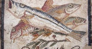 La minute antique #15 : les activistes végans, Apicius et les langues de flamants roses