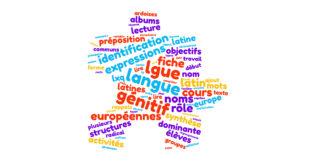 Enseigner le principe de la flexion nominale: proposition d'une démarche