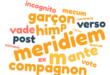 Vestiges des cas latins dans les langues française et anglaise