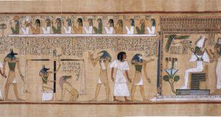 Histoire du livre- Épisode 1 : Généalogie du livre, à l'origine était le papyrus